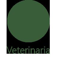 Servicio de Veterinaria de Mascotas Company, C.A